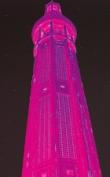 tour-perret-rose-pour-tirage-carton-sans-bordure_web.1256918170.jpg
