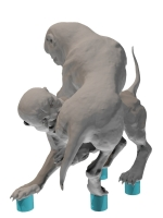Chim 3D- Mod3-2